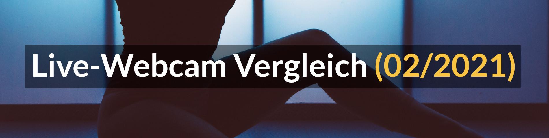 Live Webcam Vergleich Header